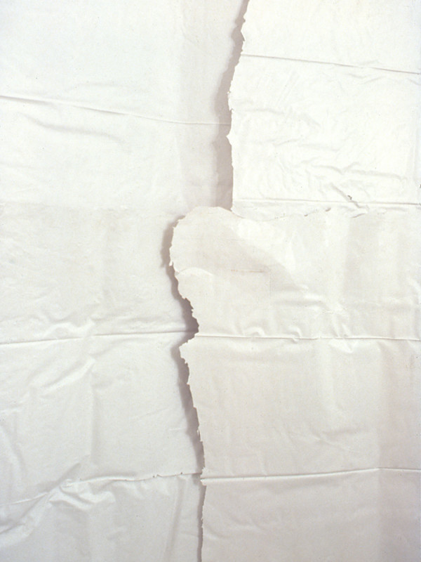 "detail, Assimilate: Paper, Thin, White, plaster, cheesecloth, 2 walls, averaging 10' 10' x .5"", 1984"
