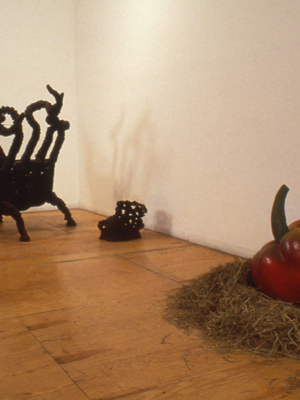 Installation View (with Ming Fay) at Exit Art/The First World