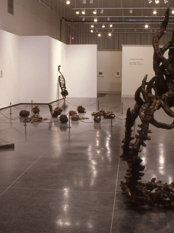 Installation, Lowe Art Gallery, Syracuse University